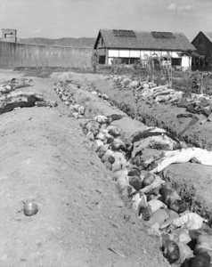 The mass killings of Koreans